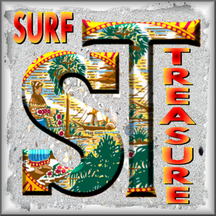 Surf Treasure Florida Shells