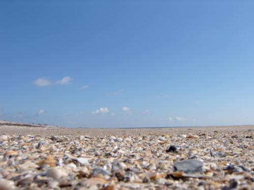 Ponce Deleon Beach